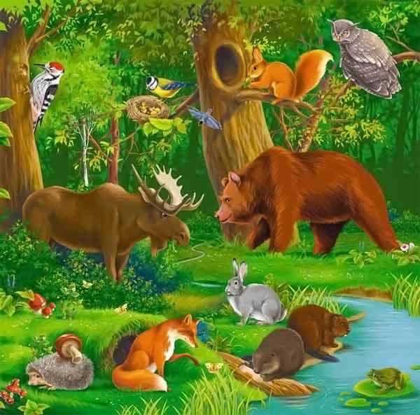 Похожие темы: новые прикольные анекдоты про зверей в лесу и картинки где есть смешные звери.